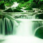 Les eaux à bases de plantes